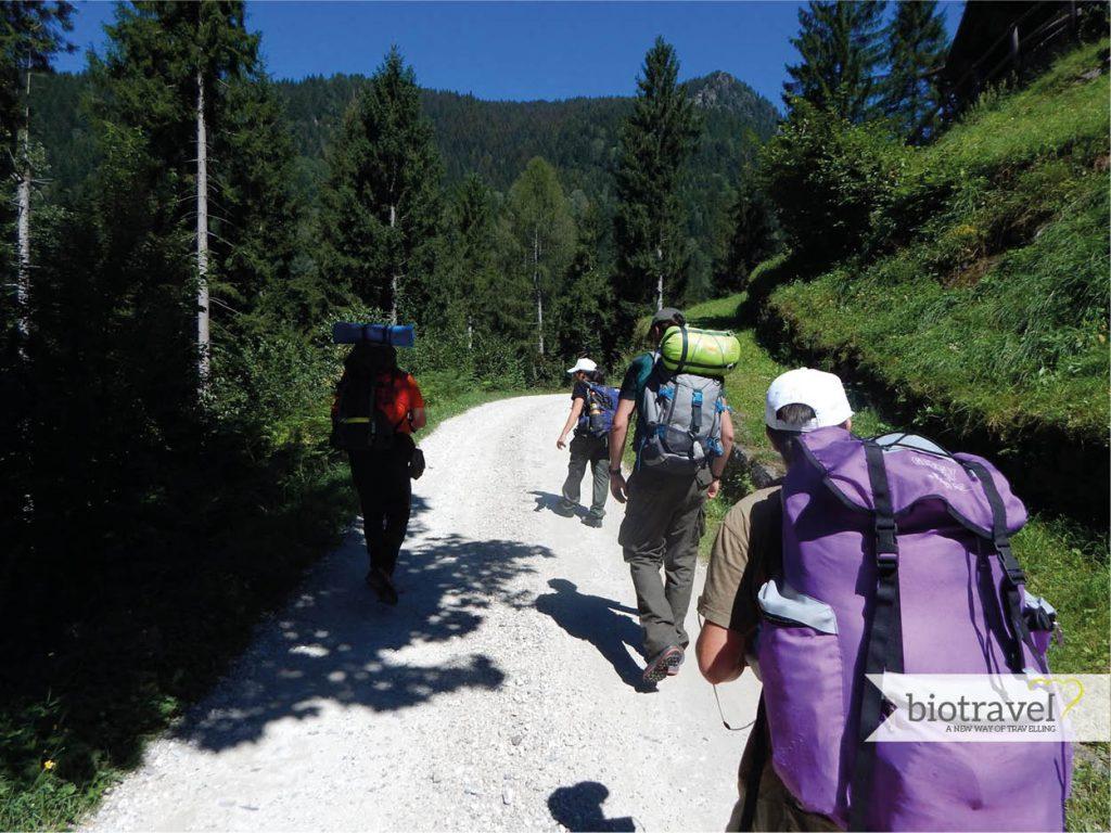 Trentino Alto Adige: i luoghi del turismo ecosostenibile ...
