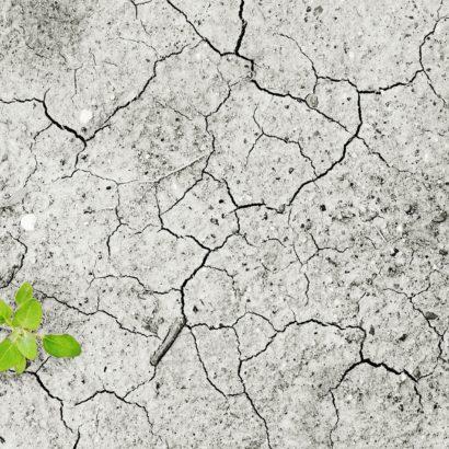 climate-change-cambiamento-cliamatico